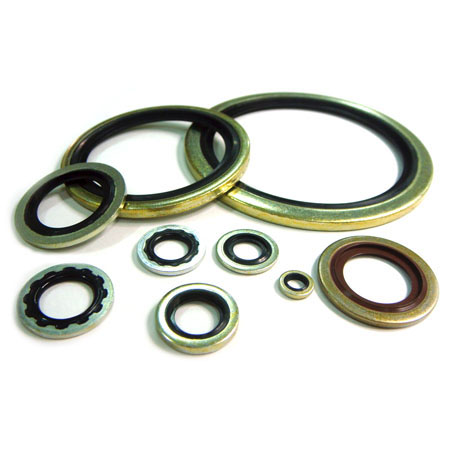 Rubber metal washer - Washer 0001